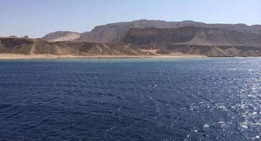 بالفيديو.. تعرف على رد فعل إعلام السيسي على حكم جزيرتي تيران وصنافير